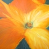 ML Marg Smith-Ms-Pumpkin-Flower-30x40-oil