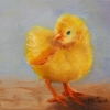 ML Marg Smith -Spring Chick