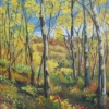 Marg Smith The View Beyond -SOLD-20x16 acrylic sold