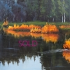 ©ML Marg Smith -Mirrored Images -18x24-oil